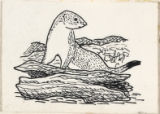 "Drawing for ""Stoat"""
